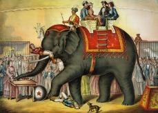 elephant_vintage-313647_960_720